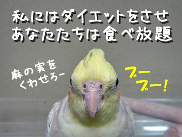100103_12