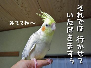 100113_2