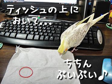 100201_3
