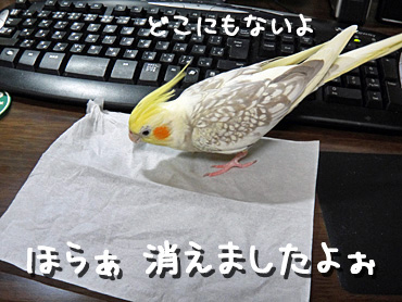 100201_5
