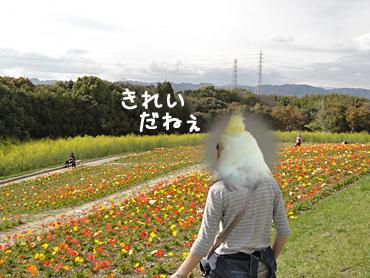 100411_7