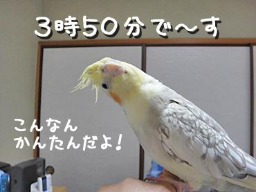 100509_1
