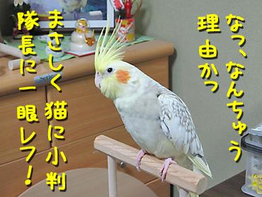 101128_10