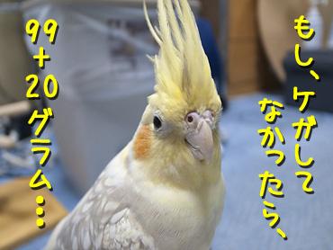 1212_4
