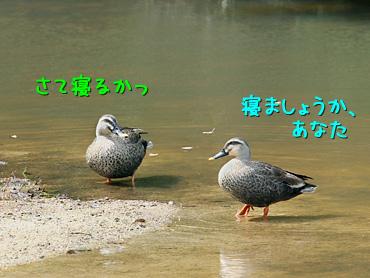 120705_1