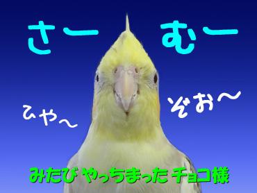 121017_3 /></p>  <p><span style=