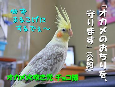 121208_4