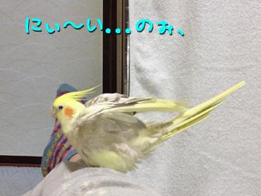 130221_3