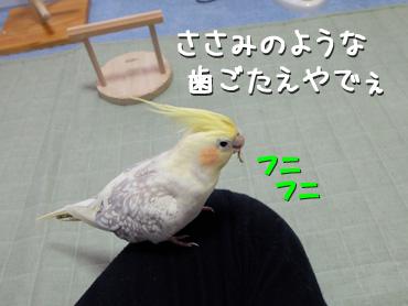 130415_3