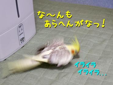 130828_3