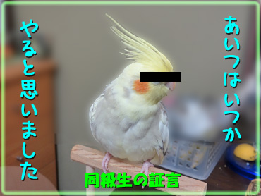 130822_4