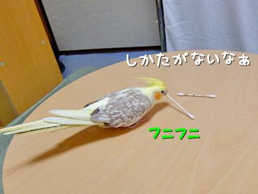 140410_4
