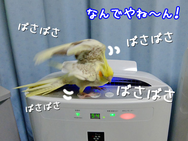 140501_3