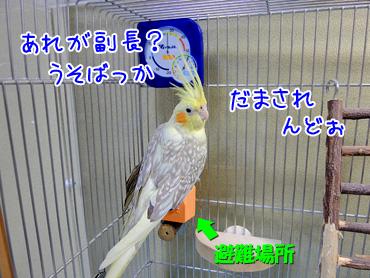 140605_4
