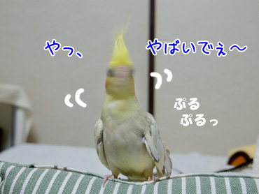 141001_2