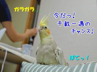 141001_4