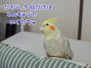150104_3