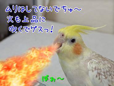150104_5