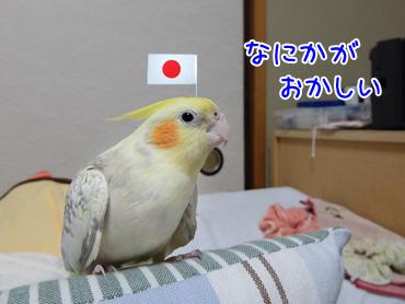150205_4