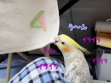150315_4