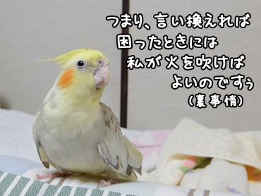 150405_6