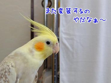 151009_4