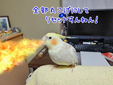 151013_5